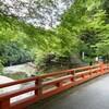 京都 青モミジ 高尾山の神護寺