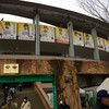 ソフトバンク・ホークス宮崎キャンプ(宮崎市)