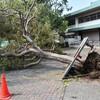 台風後に気を付けたい事。危険は台風後にもあります、注意しましょう。