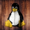【Linux】ディレクトリにファイルが作れない・コピーできない原因
