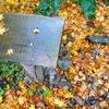 周りは秋色