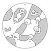 単純平面タングルとカウフマン図のキャンバス・基準点について