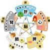 品物を東西という中国語は陰陽五行説から