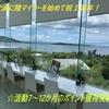 コロナ渦に陸マイラーを始めて祝1周年!☆活動7~12か月のポイント獲得実績☆