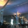 【バレンタイン】羽田空港のイルミネーションを撮ってきました。