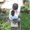 春の植物観察と、今日のオヤツと夕ごはん