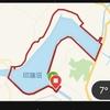 西印旛沼一周とちょっと、20キロ走に行ってきた。