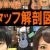 スタッフ解剖図鑑Vol.1~店長疋田(ひきた)の巻~