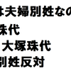 丸川男女共同参画担当相!夫婦別姓で批判殺到!丸川珠代議員、本名大塚珠代!