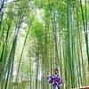 大好きな京都を応援観光してきました。