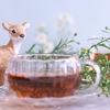 疲労回復に効果的なハイビスカスハーブティー紅茶