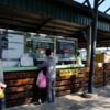 【台南】「四草緑色隧道」で癒しのマングローブクルーズ
