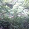 【高尾山】4号路登り~吊り橋ありの観光コース~