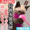 ダイソーの猫のおもちゃで子猫3兄弟と遊んでみた!狩猟本能に目覚める!!