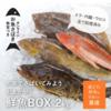 石巻 フィッシャーマンジャパン通販【鮮魚ボックス】取り寄せレビュー