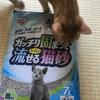 最高の猫砂を求めて①【アイリスオーヤマ ガッチリ固まってトイレに流せる猫砂】を試してみた