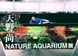 『天野尚 NATURE AQUARIUM展』の素晴らしさ