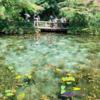 名もなき池(通称モネの池)探索記録