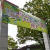 シンコ デ マヨ フェスティバル2015@代々木公園〜今年のヨヨコー各国フェス本格始動!〜
