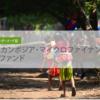 【SBIソーシャルレンディング】カンボジア・マイクロファイナンスローンファンドは見送り・・・