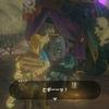 【ゼルダの伝説BoW プレイ日誌42】ついに出会えた魔物屋キルトン