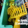 Workaway4軒目!スペインのカタルーニャで、オリーブの収穫をしてみた。
