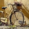 自転車で違反をすると支払いを求められる罰金はいくら?(実際の例付で紹介)