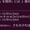 Ubuntu 18.04 に Oracle Java 11 JDK をインストール
