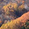 飛騨の秋景色 『清見町』 vol 1