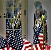 議会占拠の人民を米国は裁けるのか;その正当性と民主主義を根本から考える