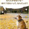 柴犬まるからの質問「センチメンタルになる時はどんな時?」