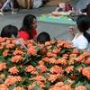 【香港で日曜日に現れるピクニック集団!?———Maids in HK?】