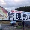 在日本最能享乐钓鱼池