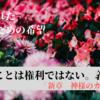 【生きる希望がない人へ】「新章 神様のカルテ」がくれる生きるための希望