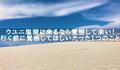 ウユニ塩湖へ来るなら覚悟して来い! 行く前に覚悟してほしいたった1つのこと