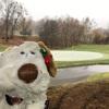 ゴルフコースは雪