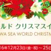 【予約受付間近!】クリスマスは大切な人と夜の水族館で特別な時間を過ごしませんか?|鴨川シーワールドのクリスマス・ナイト・プラン
