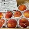 ふるさと納税、長野県小布施町のお礼の品、黄金桃