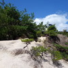 立て続けに、ロックガーデン探検(その2)A懸垂岩