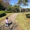 ブランコ好きにおすすめ!緑いっぱいの公園、ゆたか緑地