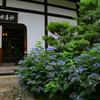 京都・東山 - 建仁寺霊源院 甘露の庭特別公開