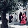 お寺さんぽ、曼荼羅と禅問答(チベット旅行5)