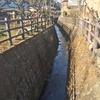 目久尻川から芹沢川へ歩く 相模原台地から流れ下る川その2