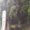 九州最強のパワースポットのひとつと言われる幣立神宮
