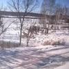 【冬のシベリア鉄道&バイカル湖(オリホン島)】シベリア鉄道《ロシア号》ウラジオストク~イルクーツク 3泊4日 3等寝台に女1人で乗ってみました②