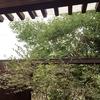 箱根 オーベルジュ漣⑤ 朝食・チェックアウト