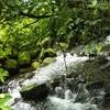 フリー素材 / 清らかな水の流れをイメージしたピアノ曲 【Audiostock】