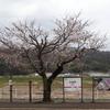 【丹後の鉄道がよく分かる!】丹後山田駅資料室 2020/3/29 加悦⑧