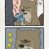 チベットスナギツネの砂岡さん「涙」