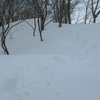◆2/16      金峰山~鎧ヶ峰 雪いっぱい③…鎧ヶ峰へ(後半)